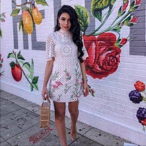 Zara Blogers Favorite Lace Floral Eyelet Dress XS